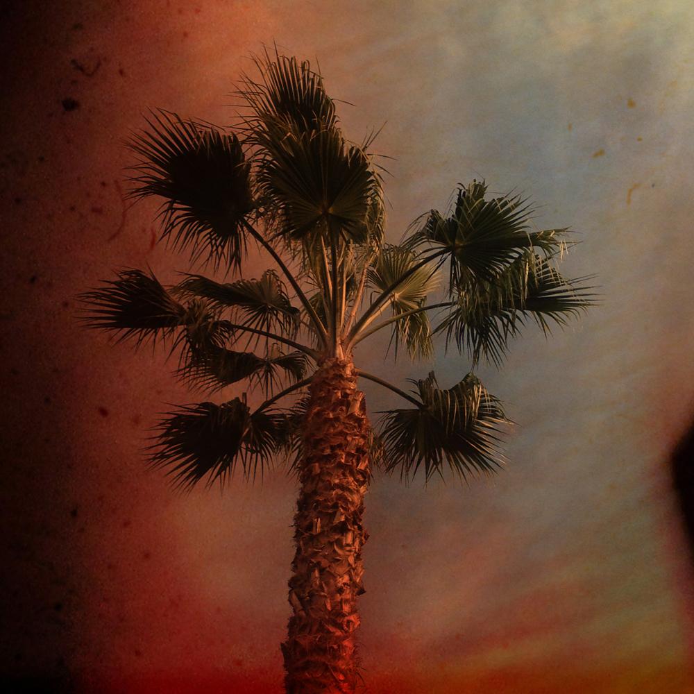 """Red Skies at Dawn"" by Elena Karavodin"