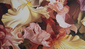Iris Orgy (Extended Study)
